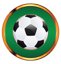 Soccer ball icon2 vector