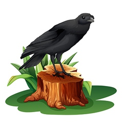 A bird above the stump vector