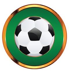 Soccer Ball Icon2 vector image