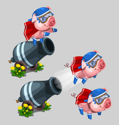 Circus performance gun shoots a pig cartoon style vector