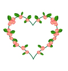 Crown of thorns flowers in a heart shape vector