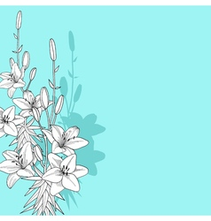 black and white of lily on blue background vector image vector image