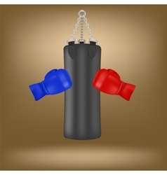 Boxing Gloves and Black Sport Bag vector image