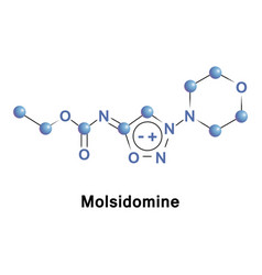 Molsidomine is a long acting vasodilating drug vector