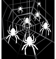 spiders and web vector image vector image