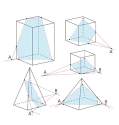 Math picture - sections of polyhedra geometry vector