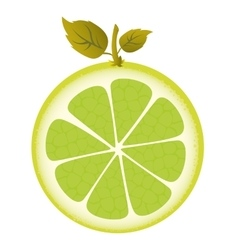 Citrus fresh fuit healthy isolated icon vector