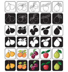 fruit icon apple pear plum apricot vector image vector image