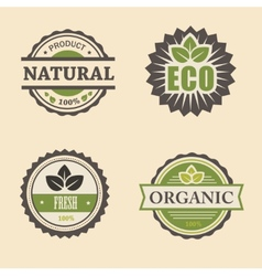 natural eco design elements set vector image