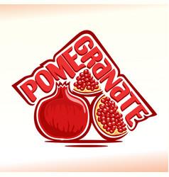 Pomegranate still life vector