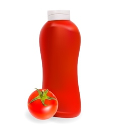 Ketchup tomato sauce on white background  eps10 vector