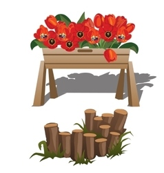 Red poppies in wooden box and timber vector