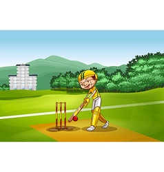 Boy playing cricket on pitch vector image