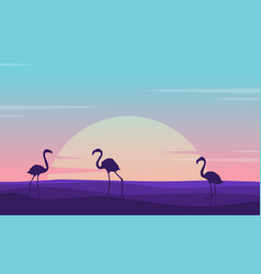 at sunrise flamingo lined on the hill scenery vector image