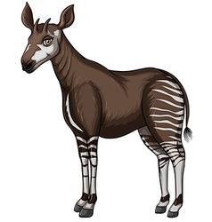 Okapi vector image vector image