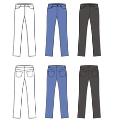 Woman jeans vector image vector image