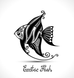 Exotic fish patterned sea logo collection vector
