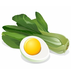 Cabbage salad with sliced egg vector