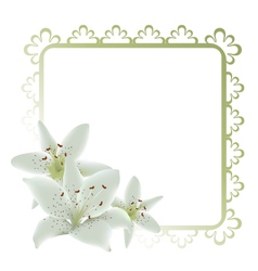 Lily flowers frame vector