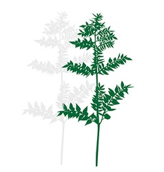 Silhouette of a green plant vector