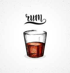 Color rum in glass with calligraphy sketch by hand vector