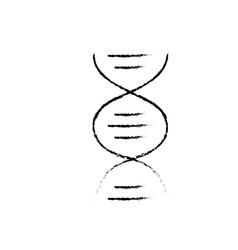 figure dna science cell medicine molecule vector image