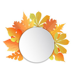 frame with leaves template for autumn events to vector image