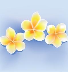 jepun flower vector image vector image
