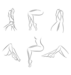 Set of womens legs vector image