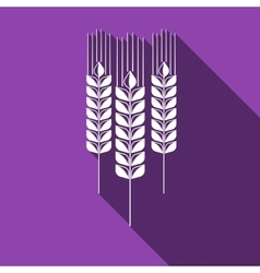 Wheat ear icon with long shadow vector image