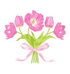 Tulips bouquet vector