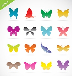 group of colorful butterfly vector image vector image