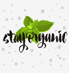Stay organic rough traced custom artisti vector