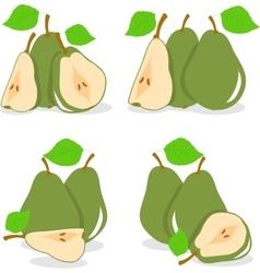 Pear  green pears vector