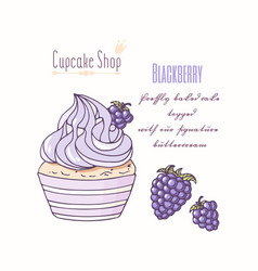 hand drawn cupcake blackberry flavor vector image vector image