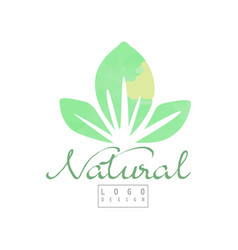 natural logo template with abstract green leaves vector image
