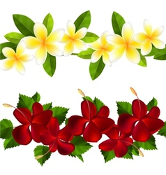 Samless border made of tropical flowers vector