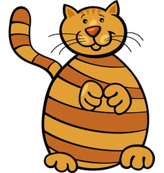 yellow tabby cat vector image vector image