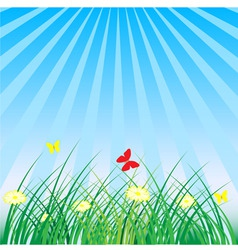 Summer spring nature background grass butterflies vector