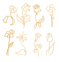 flowers design set vector image