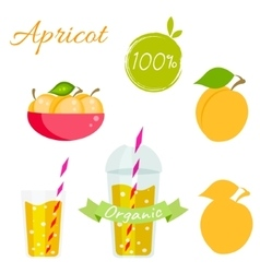 Apricot fruit and juice set vector image vector image