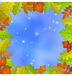 Leaves and sky vector image vector image