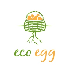 Eco eggs in basket with root vector