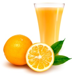 Fresh orange and glass with juice vector image