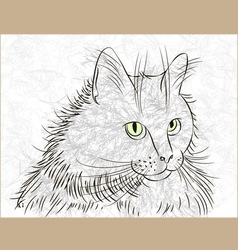 cat ink vector image vector image