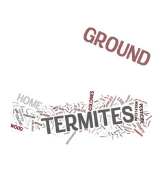 Ground termites text background word cloud concept vector