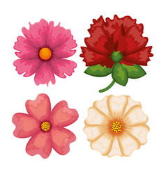set flowers pattern background vector image vector image