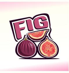 Fig still life vector
