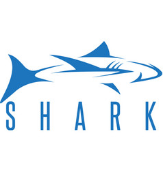 Design template of the abstract shark vector