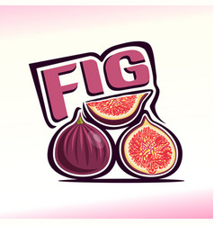 fig still life vector image vector image